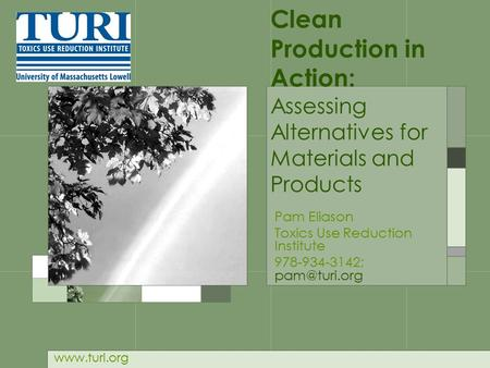 Clean Production in Action: Assessing Alternatives for Materials and Products Pam Eliason Toxics Use Reduction Institute 978-934-3142;
