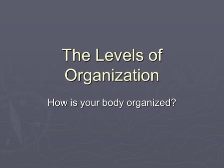 The Levels of Organization