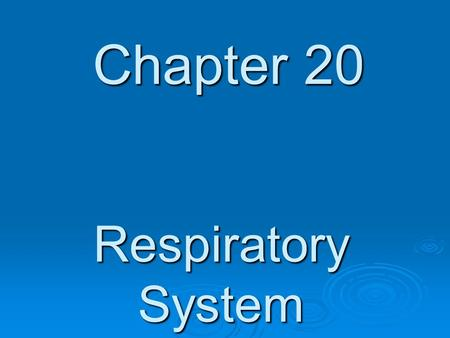 Chapter 20 Respiratory System. Respiratory System - Function  To provide a constant supply of Oxygen and the removal of Carbon Dioxide.  Also aids in.