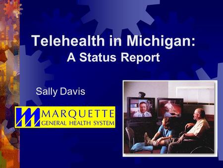 Telehealth in Michigan: A Status Report Sally Davis.