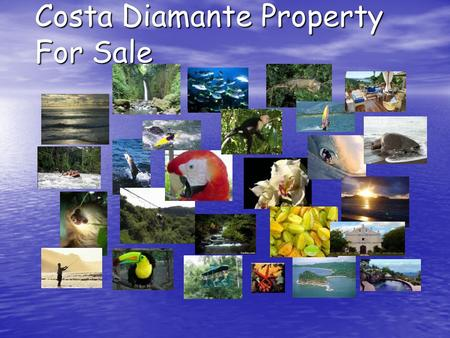 Costa Diamante Property For Sale. Property Overview Costa Palmera Residential Community is currently under development by RCJ Tambor, Ltda. on 102 H (252.