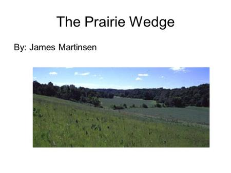 The Prairie Wedge By: James Martinsen. Introduction The Prairie Peninsula is a wedge of prairie that extends from western Iowa to western Indiana. Which.