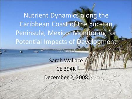 Nutrient Dynamics along the Caribbean Coast of the Yucatan Peninsula, Mexico: Monitoring for Potential Impacts of Development Sarah Wallace CE 394K December.