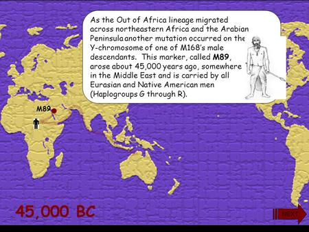 45,000 BC M89 As the Out of Africa lineage migrated across northeastern Africa and the Arabian Peninsula another mutation occurred on the Y-chromosome.