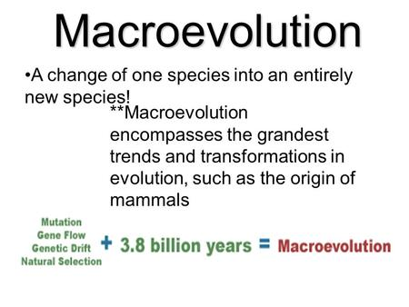 Macroevolution A change of one species into an entirely new species!