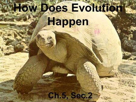 How Does Evolution Happen Ch.5, Sec.2. Charles Darwin.