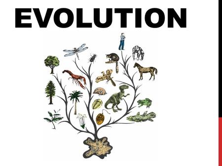 EVOLUTION. Evolution is the gradual change of a species over many generations. Evolution is a theory. A scientific theory is a well-tested concept that.