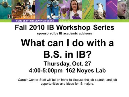 Fall 2010 IB Workshop Series sponsored by IB academic advisors What can I do with a B.S. in IB? Thursday, Oct. 27 4:00-5:00pm 162 Noyes Lab Career Center.