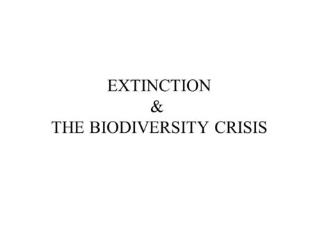 EXTINCTION & THE BIODIVERSITY CRISIS. Biodiversity: All the variety of life, at every level of organization... Genetic diversity Species diversity Ecosystem.