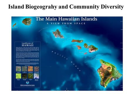 Island Biogeograhy and Community Diversity. Islands differ in species number HawaiiA somewhat smaller island Much of this variation is explained solely.