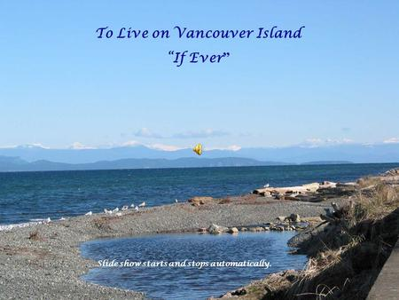 "To Live on Vancouver Island ""If Ever "" Slide show starts and stops automatically."