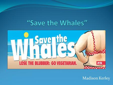 Madison Kerley. Background Information This advertisement was revealed on The PETA Files (PETA's blog) on August 17, 2009, and it was put up in Jacksonville,