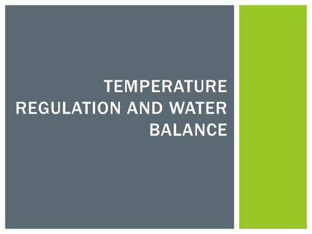 TEMPERATURE REGULATION AND WATER BALANCE. Ectotherm Vs. Endotherm Ectotherms –have a body temperature that is more or less determined by the temperature.
