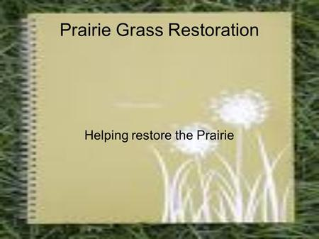 Prairie Grass Restoration Helping restore the Prairie.