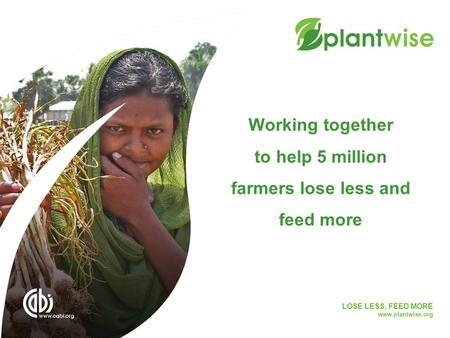 LOSE LESS, FEED MORE www.plantwise.org Working together to help 5 million farmers lose less and feed more.