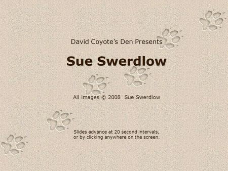 David Coyote's Den Presents Sue Swerdlow All images © 2008 Sue Swerdlow Slides advance at 20 second intervals, or by clicking anywhere on the screen.