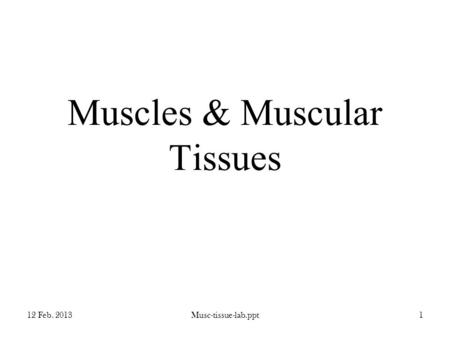 Muscles & Muscular Tissues 12 Feb. 2013Musc-tissue-lab.ppt1.