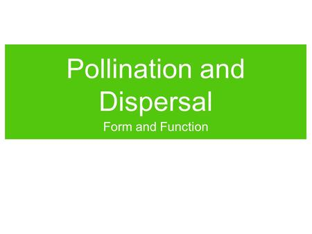 Pollination and Dispersal Form and Function. Pollination Pollination is how gymnosperms (cone-bearing seed plants) and angiosperms (flowering plants)
