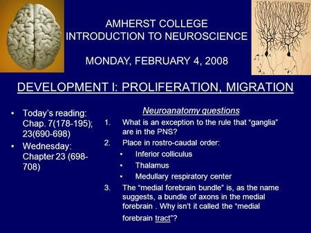 DEVELOPMENT I: PROLIFERATION, MIGRATION Today's reading: Chap. 7(178-195); 23(690-698) Wednesday: Chapter 23 (698- 708) AMHERST COLLEGE INTRODUCTION TO.