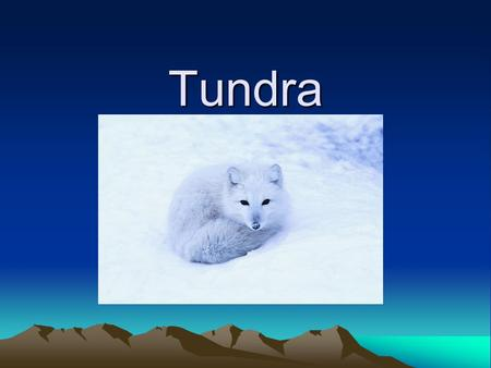 Tundra. caribou To keep the heat in, caribou have two layers of fur covering their bodies. They have a fine crinkly under-fur and a thick coat of guard.