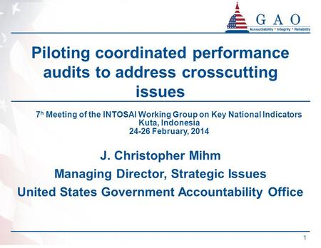 PRELIMINARY Piloting coordinated performance audits to address crosscutting issues J. Christopher Mihm Managing Director, Strategic Issues United States.