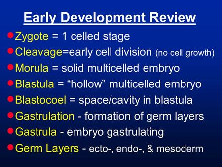 "Early Development Review  Zygote = 1 celled stage  Cleavage=early cell division (no cell growth)  Morula = solid multicelled embryo  Blastula = ""hollow"""