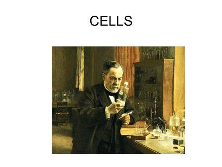 CELLS …a sense of scale….. Single-cellular Organism Made of just one cell.