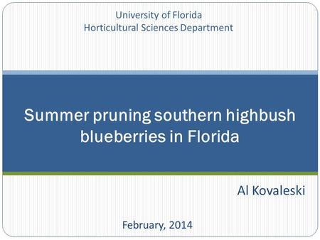 Al Kovaleski February, 2014 Summer pruning southern highbush blueberries in Florida University of Florida Horticultural Sciences Department.