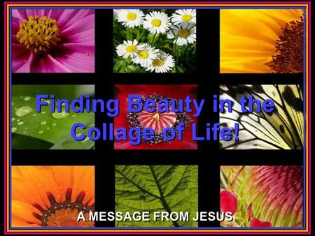 CLICK TO ADVANCE SLIDES ♫ Turn on your speakers! ♫ Turn on your speakers! Finding Beauty in the Collage of Life! Finding Beauty in the Collage of Life!