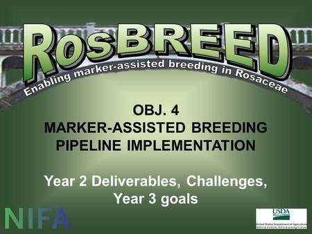 OBJ. 4 MARKER-ASSISTED BREEDING PIPELINE IMPLEMENTATION Year 2 Deliverables, Challenges, Year 3 goals.