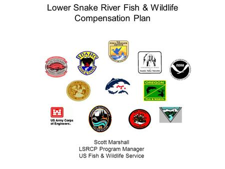 Lower Snake River Fish & Wildlife Compensation Plan Scott Marshall LSRCP Program Manager US Fish & Wildlife Service.