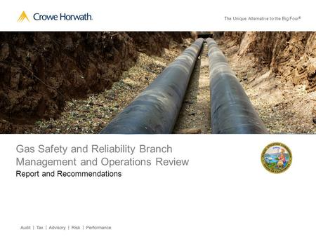 The Unique Alternative to the Big Four ® Gas Safety and Reliability Branch Management and Operations Review Report and Recommendations.