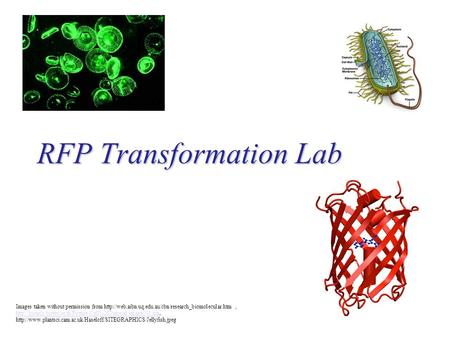 RFP Transformation Lab Images taken without permission from
