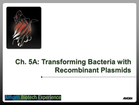 Ch. 5A: Transforming Bacteria with Recombinant Plasmids.