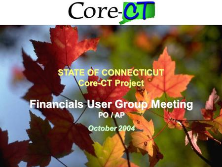 1 Financials User Group Meeting PO / AP October 2004 STATE OF CONNECTICUT Core-CT Project.