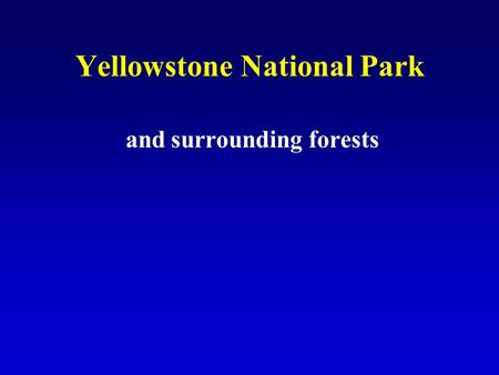Yellowstone National Park and surrounding forests.