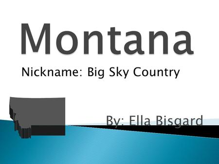 By: Ella Bisgard Nickname: Big Sky Country. AnimalBird  Grizzly Bear  Western Meadowlark.