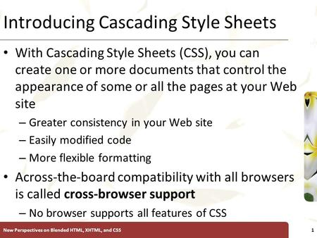 XP Introducing Cascading Style Sheets With Cascading Style Sheets (CSS), you can create one or more documents that control the appearance of some or all.