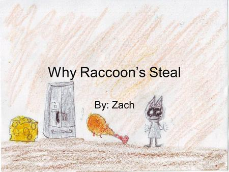 Why Raccoon's Steal By: Zach. Long ago, when Adam and Eve roamed, Raccoon didn't steal. He was very rich and powerful, also greedy and unwise by taking.