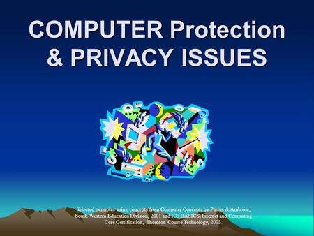 COMPUTER Protection & PRIVACY ISSUES Selected examples using concepts from Computer Concepts by Pusins & Ambrose, South-Western Education Division, 2001.