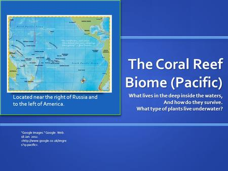 The Coral Reef Biome (Pacific) What lives in the deep inside the waters, And how do they survive. What type of plants live underwater? Google Images.