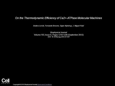 On the Thermodynamic Efficiency of Ca2+-ATPase Molecular Machines Anders Lervik, Fernando Bresme, Signe Kjelstrup, J. Miguel Rubí Biophysical Journal Volume.