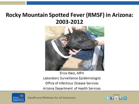 Health and Wellness for all Arizonans azdhs.gov Rocky Mountain Spotted Fever (RMSF) in Arizona: 2003-2012 Erica Weis, MPH Laboratory Surveillance Epidemiologist.
