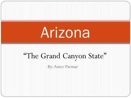 "By: Amee Parmar Arizona ""The Grand Canyon State""."