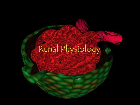Renal Physiology.