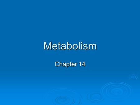 Metabolism Chapter 14. The Main Function of Metabolism  Metabolism = living cells use nutrients in many chemical reactions that provide energy for vital.