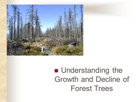 Understanding the Growth and Decline of Forest Trees.