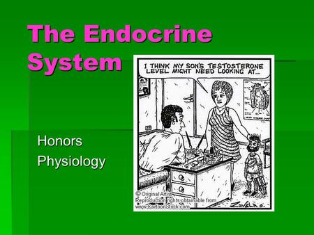 The Endocrine System Honors Physiology.