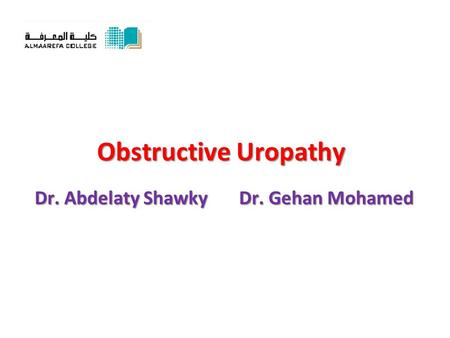 Obstructive Uropathy Dr. Abdelaty Shawky Dr. Gehan Mohamed.