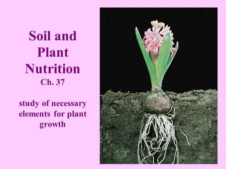 Soil and Plant Nutrition Ch
